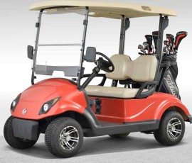 EQ9022-two-seater-golf-cart