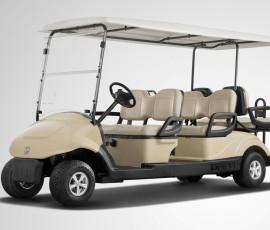 EQ9042(V6)-six seater golf cart